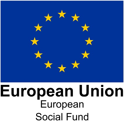 eu social fund large 1