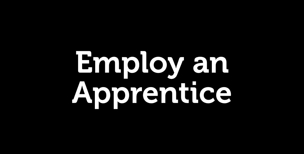 Employ an Apprentice