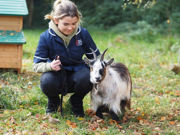 animal care open day